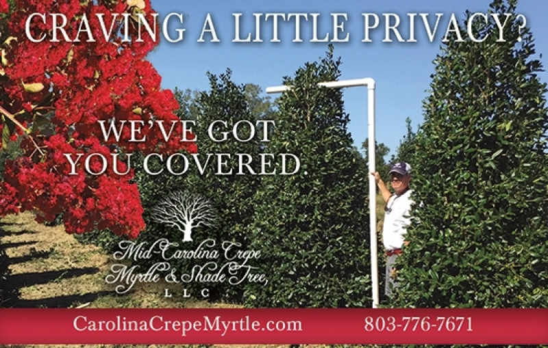 Mid-Carolina Crepe Myrtle & Shade Tree