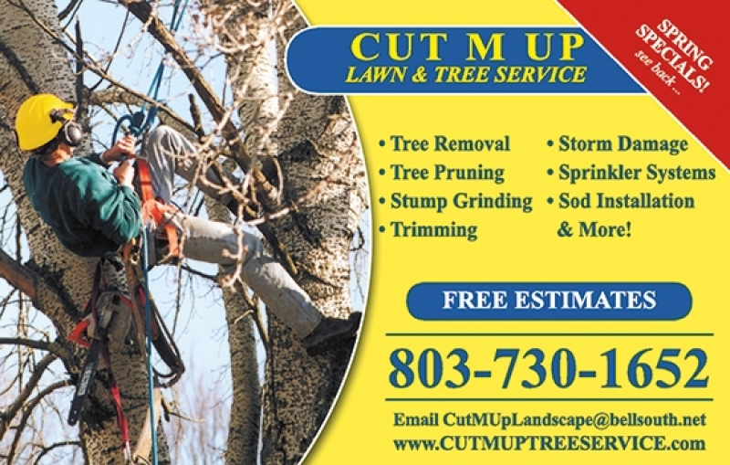 Cut M Up Lawn & Tree Service