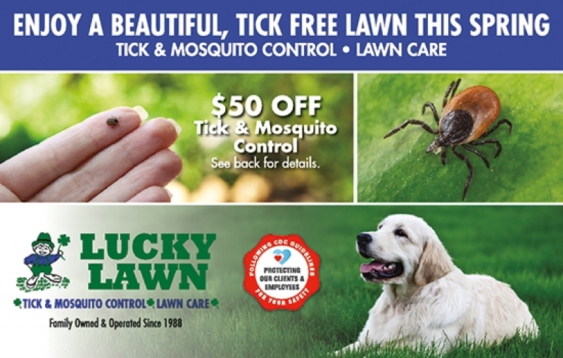 Lucky Lawn