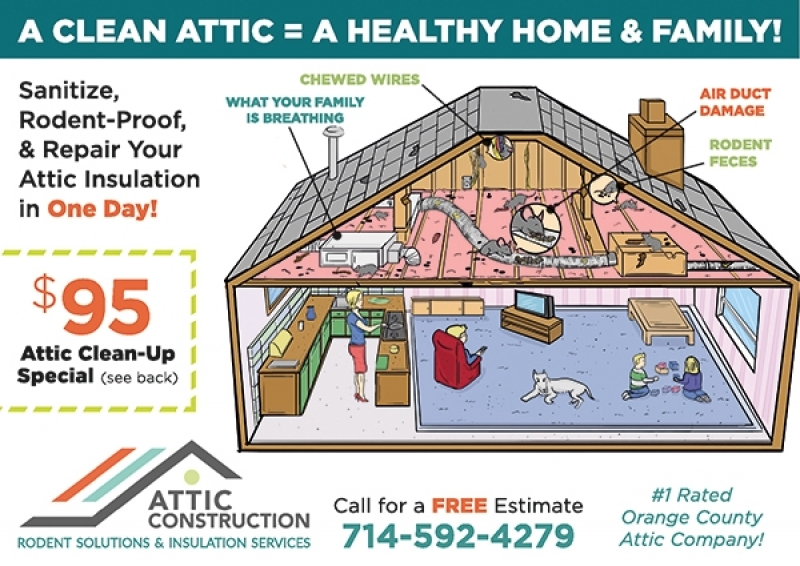 Attic Construction Rodent Solutions & Insulation Services | North