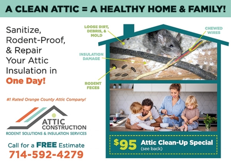 Attic Construction Rodent Solutions & Insulation Services | Central & South