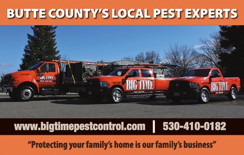 Big Time Pest Control | Butte