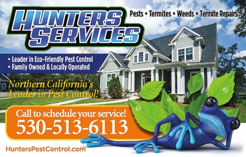 Hunters Pest Services
